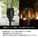 EN_solar_garden_image4